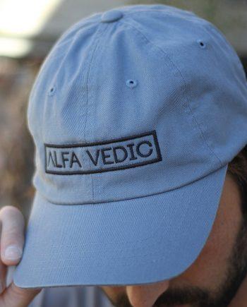 AV Dad Hat