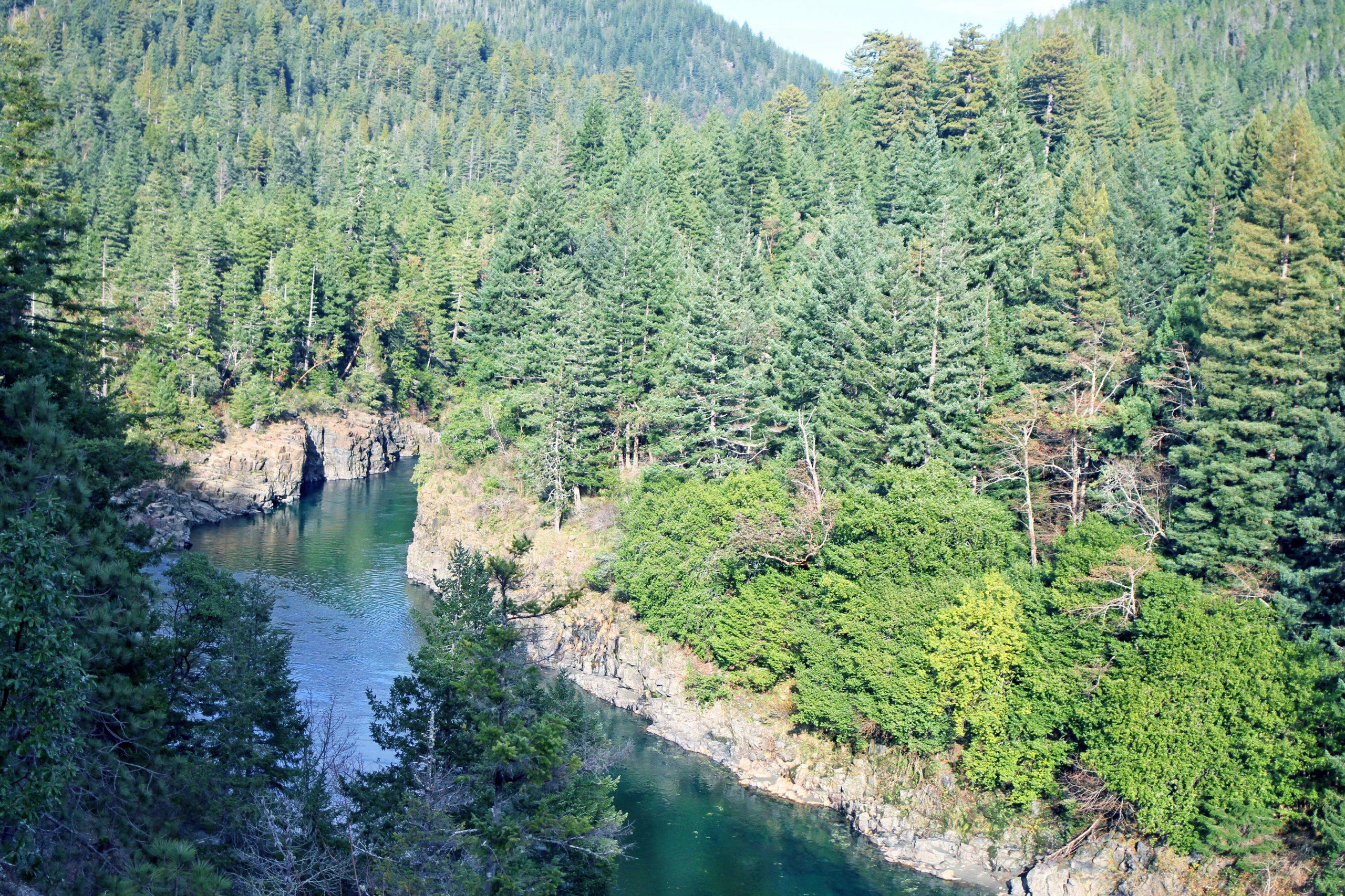 Alfa Vedic Smith River